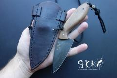 SHOK 393 Brum
