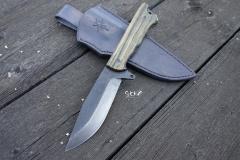 SHOK-493-Svojen